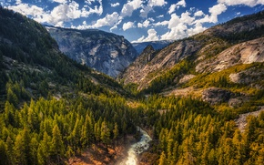 Picture Tuolumne Meadows, mountains, trees, CA, gorge, river, clouds, the sky, rocks, for, stones, USA