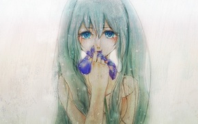 Picture tears, blue eyes, grey background, Hatsune Miku, long hair, vokaloid, iris