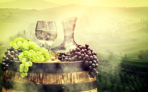 Picture landscape, fog, field, glasses, grapes, pitcher, barrel, meadows