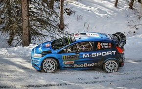 Picture Ford, WRC, Rally, Fiesta, Monte Carlo, Ostberg