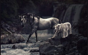 Picture animals, mountains, nature, tiger, horse, unicorn, waterfalls, retouching, To nikkal