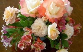 Picture flowers, alstremeria, bouquet, nature, Alstroemeria, roses, flower