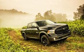 Picture black, road, dodge, fog, way, saw, 4x4, truck, 1500, Ram, 2013, vegetation, hemi, HEMI, 5.7-liter