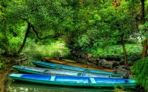 Picture forest, river, boats