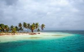 Picture sea, tropics, palm trees, shore, Panama