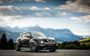 Picture Concept, the concept, Nissan, Nissan, juke, Juke-R, 2015
