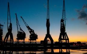 Wallpaper crane, Port, sunset