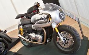 Picture triumph, motorbike, caferacer