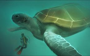 Picture the ocean, diver, turtle, Alexander Khitrov, GaudiBuendia