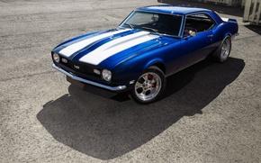 Picture Chevrolet, Camaro, Blue, 1968