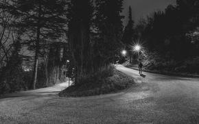 Wallpaper back, night, male, lampposts, walking, road, trees