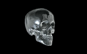 Picture glass, teeth, Skull, black background