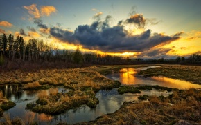 Picture grass, water, clouds, sunset, stream
