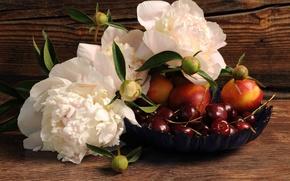 Picture flowers, berries, Board, bowl, fruit, cherry, peonies, nectarines