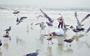 Picture sea, girl, birds