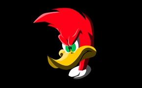 Picture background, black, cartoon, woodpecker, disney, woody