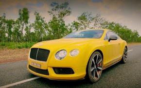 Picture road, machine, Bentley, Top Gear