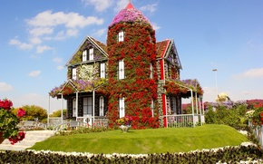 Picture flowers, design, house, lawn, Dubai, UAE, United Arab Emirates, Miracle Garden