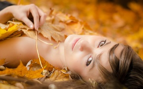 Wallpaper portrait, bokeh, autumn, leaves