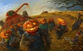 Wallpaper wheat, field, harvest, art, working, pumpkin, Halloween, Halloween, banks, cereals, Scarecrow, harvester, team