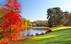 Picture autumn, landscape, lake, Park, landscape, park, autumn, lake, tree, fall season