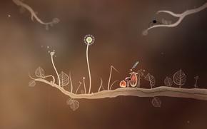 Wallpaper Amanita design, botany, Botanicula, acorn, mushroom