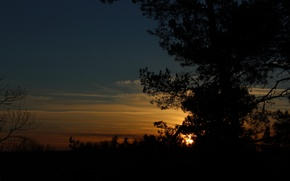 Picture the sky, trees, landscape, sunset, nature, silhouette, real photo