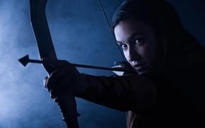 Picture look, girl, style, goal, bow, Archer, arrow, girl, beautiful, combat, military, style, military, equipment, ammunition, ...