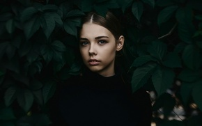 Picture leaves, girl, bokeh, portrait photo