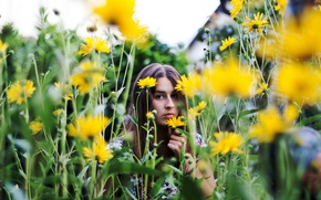 Picture summer, girl, flowers