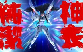 Picture girl, anime, kill la kill, Satsuki Kiryu I