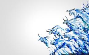 Picture Wallpaper, figure, horns, the herd, bull