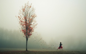 Picture autumn, leaves, girl, fog, tree