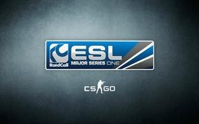 Picture Game, Electronic Sports League, CS:GO, ESL