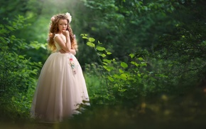 Picture nature, dress, girl