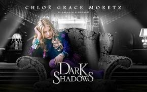 Picture movie, Dark Shadows, Chloe Grace Moretz, Tim Burton, a member of the clan Collins, Carolyn