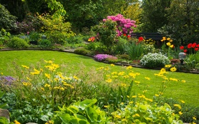 Picture landscape, flowers, nature, flowerbed