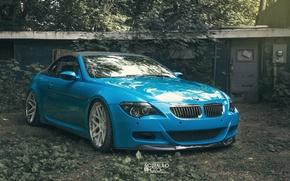Picture autumn, blue, BMW