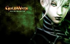 Picture Guild Wars, MMO, Necromancer