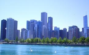 Picture Chicago, Illinois, buildings