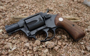 Picture weapons, background, revolver, revolver, Charter Arms, 38spl, The Charter Arms, Undercover