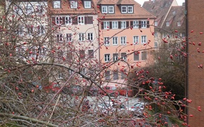 Picture winter, the city, house, Nuremberg, tees