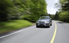Picture road, trees, bmw, BMW, trees, auto, machine, road