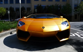 Picture reflection, yellow, shadow, lamborghini, yellow, the front, aventador, lp700-4, Lamborghini, aventador