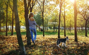 Wallpaper autumn, leaves, girl, the sun, trees, Park, jeans, Mike, figure, hairstyle, blonde, leash, husky, photographer, ...