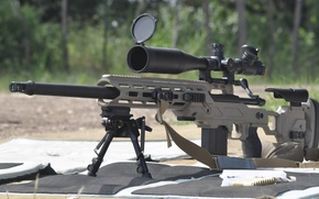 Picture weapons, Drake Associates, Remington, Stalker 700, sniper