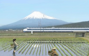 Wallpaper train, Fuji, rice field, Train