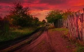 Picture autumn, the fence, treatment, village, track, Nature, autumn, village, path, fall