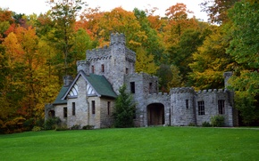 Picture trees, glade, castle, Squires Castle, grass, autumn, forest, USA