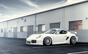Picture white, Porsche, white, drives, Porsche